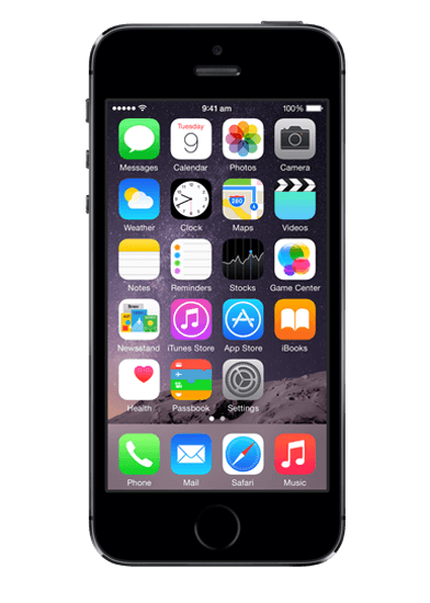 Apple iPhone 5s Black