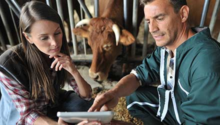 Woman and man using a tablet in a rural setting