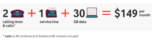 2 calling lines + 1 service line + 15GB data = $149 per month. Included calls are to NZ landlines and Vodafone NZ mobiles.